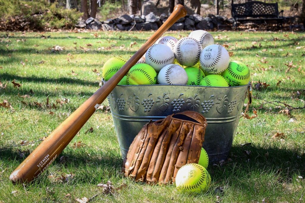 Ball Grass Game Sport Recreation  - Ogutier / Pixabay