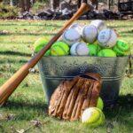 Ball Grass Game Sport Recreation  - Ogutier / Pixabay